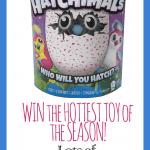 Hatchimals Giveaways – A HUGE list of Hatchimal Giveaways!